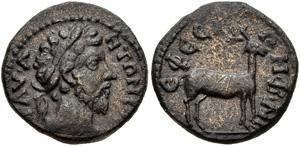 Roman Provincial  863185